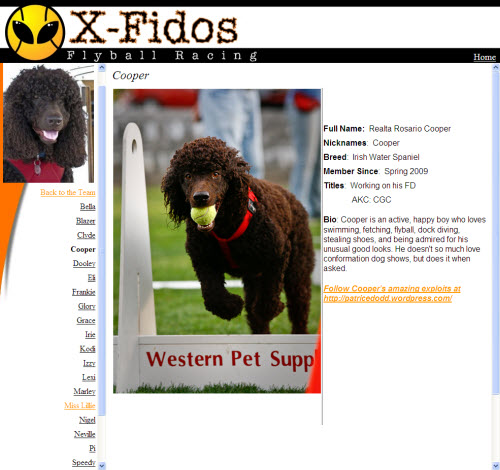 x-fidos_page_090709