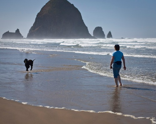 Tooey, Haystack Rock, and Trice