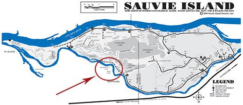 Sauvie Island Dog Training