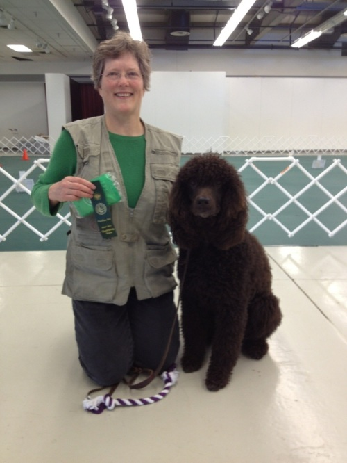 AKC Rally Obedience | ...