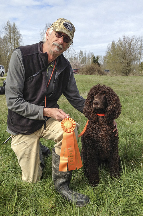 Tooey Irish Water Spaniel