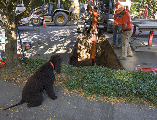 Cooper supervises the excavation of the street in front of his house.