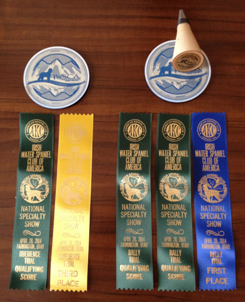 Tooey's  ribbons on the left, Cooper's on the right