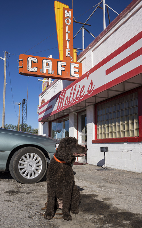 Tooey recommends the Cattlemans Breakfast