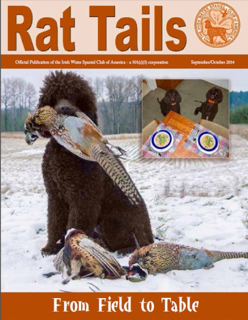 Cooper on the cover of Rat Tails