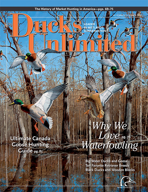 November - December issue of Ducks Unlimited